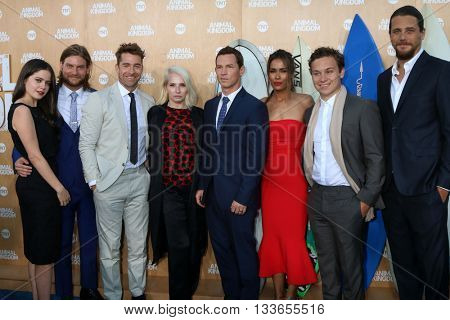 LOS ANGELES - JUN 8:  Animal Kingdom Cast at the Animal Kingdom Premiere Screening at the The Rose Room on June 8, 2016 in Venice Beach, CA