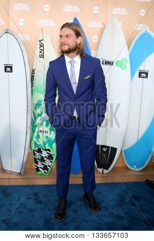 LOS ANGELES - JUN 8:  Jake Weary at the Animal Kingdom Premiere Screening at the The Rose Room on June 8, 2016 in Venice Beach, CA