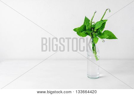 Wild Flowers In Glass Bottle On White Background.