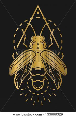 Firefly and geometric elements. Golden symbol on a dark background.