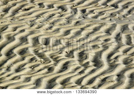 Structures in the sand beach of Island of Sylt Germany; selected focus narrow depth of field