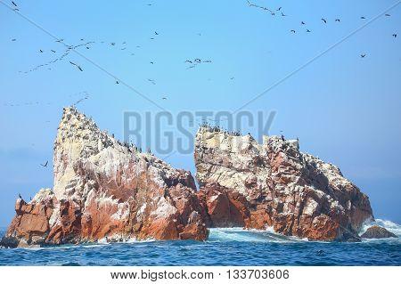 Rock Formations In Ballestas Islands Reserve In Peru