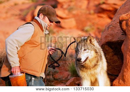 ARIZONA, USA - APRIL 16: Unidentified man - animal trainer sits with gray wolf on April 16, 2007 in Arizona, USA. The gray wolf is one of the world's best known and well researched animals.