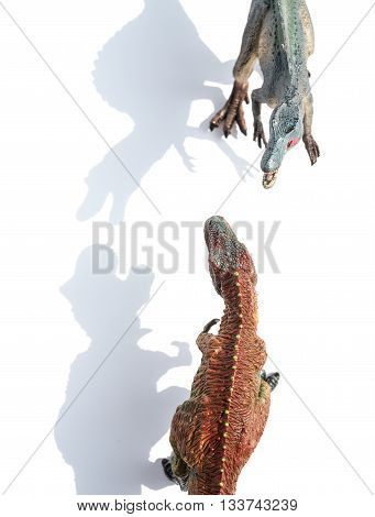 top view tyrannosaurus and spinosaurus on white with shadow