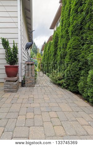 Garden Backyard Patio and Brick Paver Path with Potted Plant Garden Decor Column and Evergreen Trees Landscaping