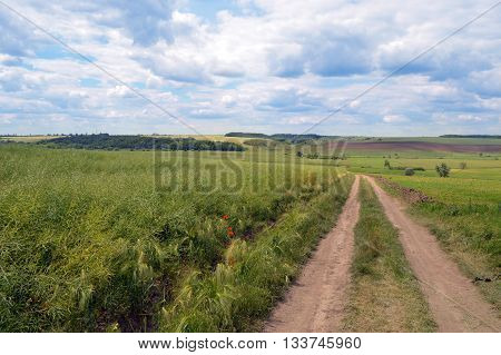rural road in green field with clouds