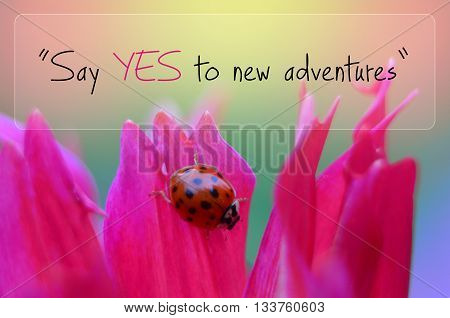 Say yes to new adventures - inspiration quote