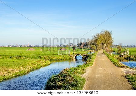 Bike path through a typical Dutch rural landscape with small streams meadows with grazing animals and in the background two windmills. It's a sunny day in the fall season.