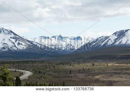 The Denali Park Road winds past snowcapped mountains