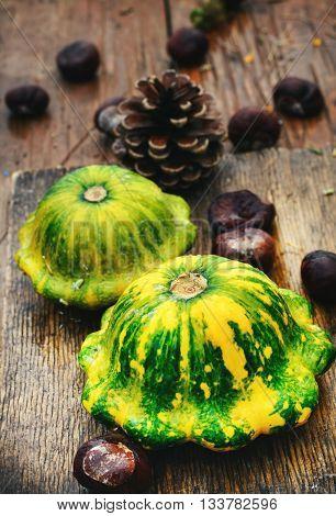Symbolic Of The Autumn Still Life