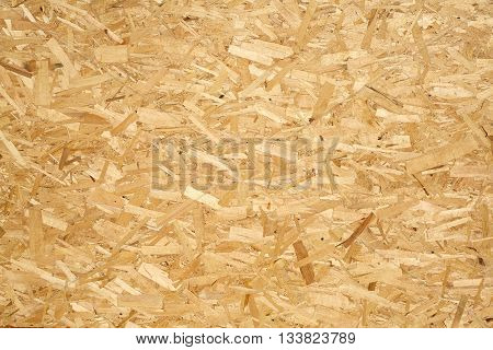 Oriented Strand Board. Wooden panel made of pressed of sandy brown wood shavings as background closeup poster