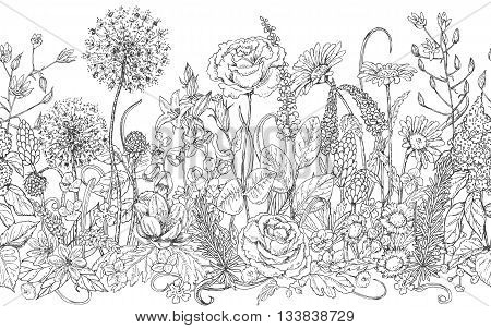 Hand drawn seamless line pattern with wildflowers. Black and white doodle wild flowers and grass for coloring. Monochrome floral elements for decoration. Vector sketch.