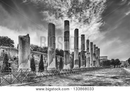 Ancient Columns Of The Temple Of Venus, Rome, Italy