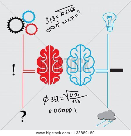 the brain activity of activity and passivity