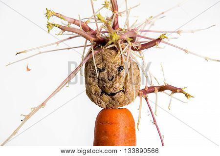 sprouting potato- face on carrot infront of white background