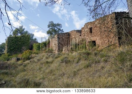 The putxot Castellnou de Bages Spain abandoned village inhabited in the early 1900s which due to phylloxera a disease caused by an insect that attacks the roots and kills the plant. poster