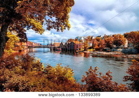 View through autumn foliage to Nidelva river Trondheim city Norway