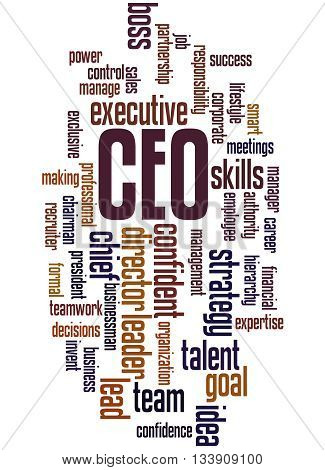 Ceo - Chief Executive Officer, Word Cloud Concept 2