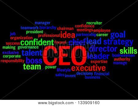 Ceo - Chief Executive Officer, Word Cloud Concept 5