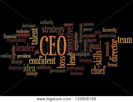 Ceo - Chief Executive Officer, Word Cloud Concept 7