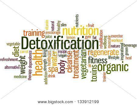 Detoxification, Word Cloud Concept 3