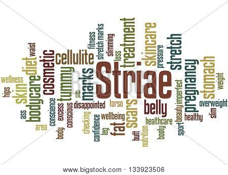 Striae, Word Cloud Concept 4