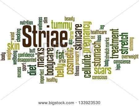 Striae, Word Cloud Concept 5