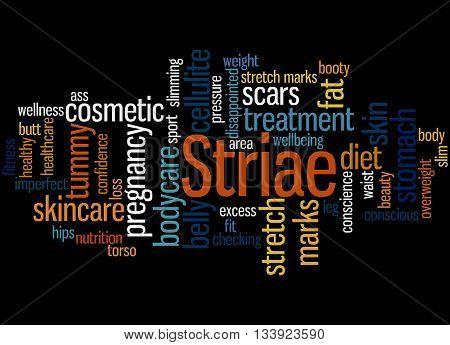 Striae, Word Cloud Concept 7