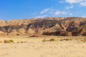 Desert around Dahab with mountains. Sinai Egypt poster