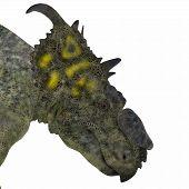 Pachyrhinosaurus Dinosaur Head 3D Illustration - Pachyrhinosaurus was a ceratopsian herbivorous dinosaur that lived in the Cretaceous Period of Alberta Canada. poster