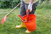 Low section og woman holding bucket with gardening equipment and rake in other hand and walking on grass in backyard poster