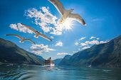 Beautiful fjords near the Flam in Norway poster