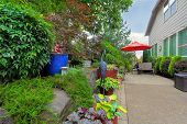 Garden Backyard patio seating red umbrella colorful container pots with plants in landscaping poster