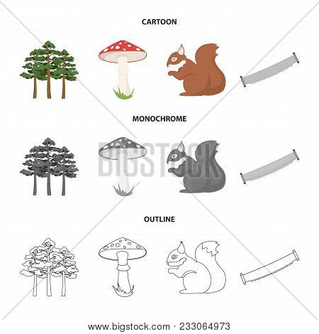 Pine, Poisonous Mushroom, Tree, Squirrel, Saw.forest Set Collection Icons In Cartoon, Outline, Monoc