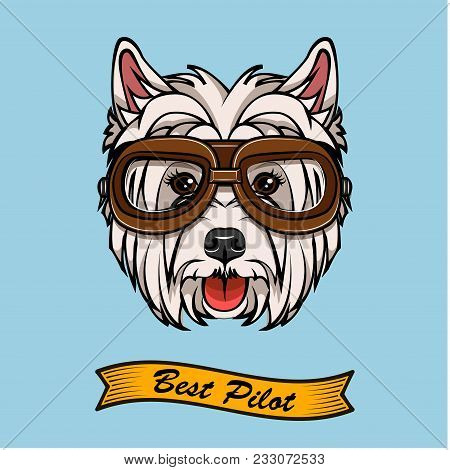 Dog West Highland White Terrier In Pilot Glasses. Vector. Best Pilot Inscription.