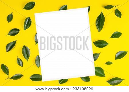 Green Tree Leaves Pattern And White Blank Frame For Text Or Image On Yellow Background