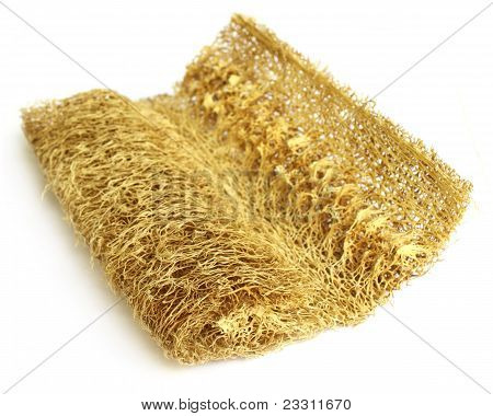 Natural scrubber of dried Ridge