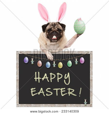 Cute Pug Puppy Dog With Bunny Ears Diadem, Holding Up Easter Egg Hanging With Paws On Blackboard Sig