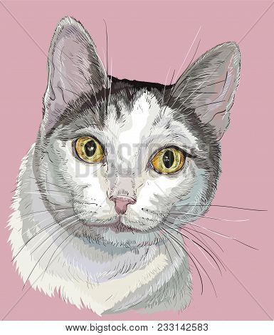Vector Outline Colorful Portrait Of Curious Mongrel Cat In Black, White And Grey Colors. Hand Drawin