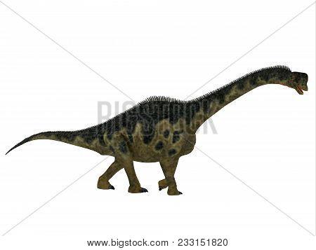 Europasaurus Dinosaur Side Profile 3d Illustration - Europasaurus Was A Sauropod Herbivorous Dinosau