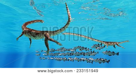 Tanystropheus And Cod School 3d Illustration - Two Tanystropheus Marine Reptiles Surround A School O