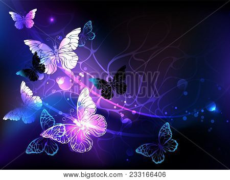 Black Background With Glowing Night Butterflies. Night Butterflies. Design With Butterflies.