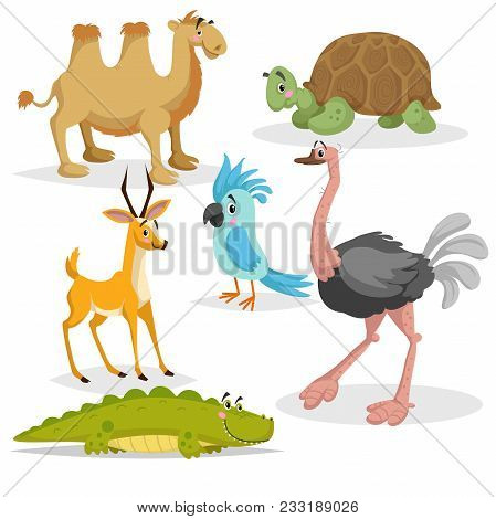 African Animals Cartoon Set. Gazzelle Anthelope, Crocodile, Bactrian Camel, Big African Turtle, Parr