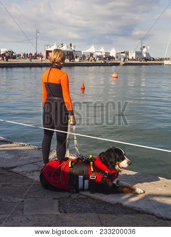 Trieste, Italy - 06 October 2017: Rescue Worker And Her Lifeguard Dog During The 49 Barcolana Race O