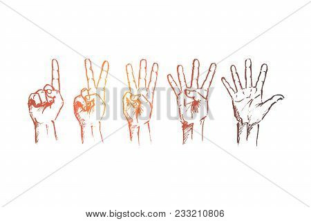 Vector Hand Drawn Hand Sign Concept Sketch. Human Fingers Showing Numbers From One To Five. Letterin