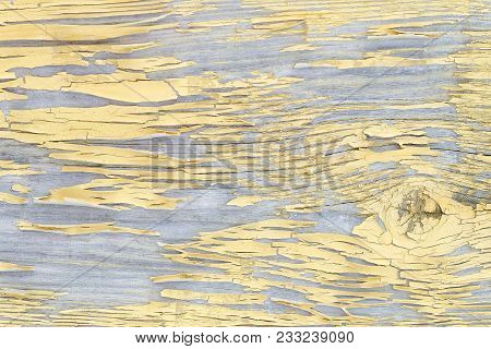 Yellow Flaked Pine Wooden Board. Close Up
