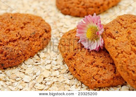 Still Life With Oatmeal Cookies
