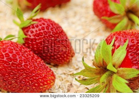 Strawberries On Oat
