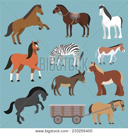 Horse Vector Animal Of Horse-breeding Or Equestrian And Horsey Or Equine Stallion Illustration Anima