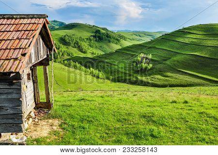 Green Meadow, Countryside In Transylvania